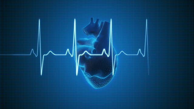 EKG Pulse Trace with Human Heart | Loopable
