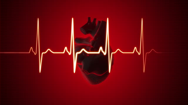 EKG Pulse Trace with Human Heart | Loopable video