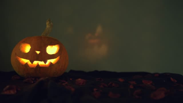 Pumpkin and a second pumpkin with reflected light in the background. Grains of roses on the ground. Camera movement to the left. Halloween art design. Pumpkin and a second pumpkin with reflected light in the background. Grains of roses on the ground. Camera movement to the left. Halloween art design. ghost icon stock videos & royalty-free footage