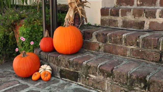 sonbahar bir eve ön girişinde kabak ve squash - sahanlık stok videoları ve detay görüntü çekimi