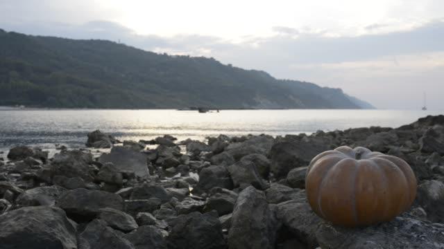pumpkin on the rock at sunse