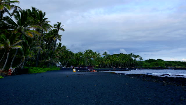 Punaluu black sand beach, Big Island. video