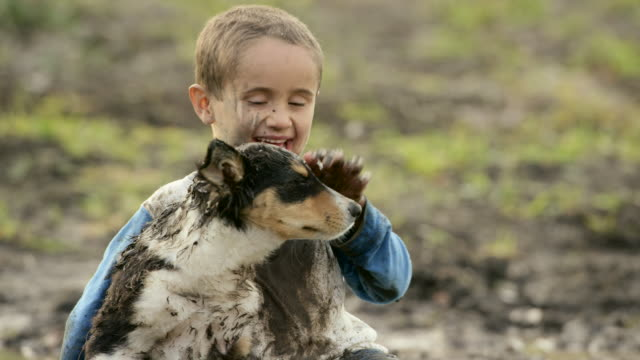 Puppy Love A young elementary aged boy plays with his border collie puppy next to a muddy puddle. They are both dirty. mud stock videos & royalty-free footage