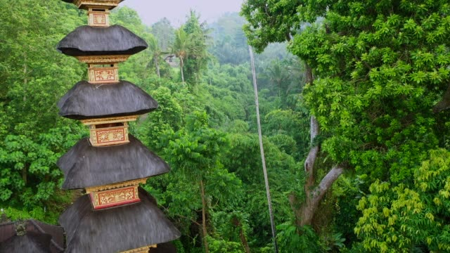 Pura Gunung Lebah Temple in Ubud from above