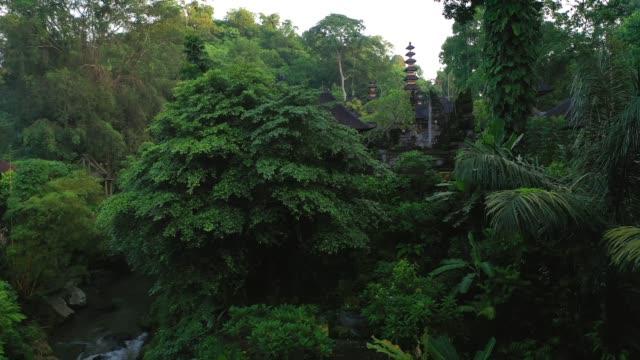 ウブドのプラグヌンミツバチ寺院、上からの眺め。 - 仏塔点の映像素材/bロール