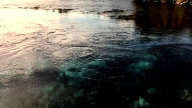 Pure Water Bubbling Out From Underground at Te Waikoropupu Springs, New Zealand video
