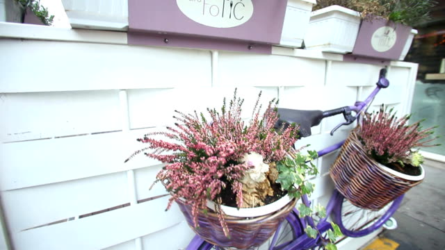 Purple bike with flowers in the basket video