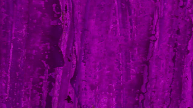 CHECKED BACKGROUND - purple, black back (TRANSITION) video