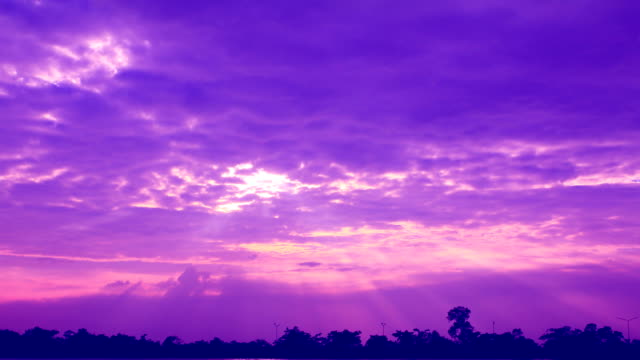 Purple sky video