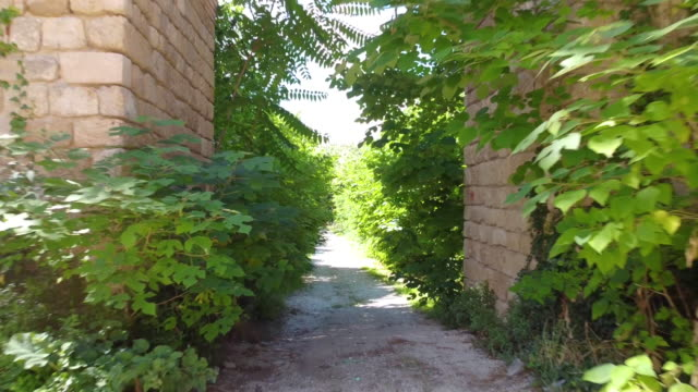 Push out through thick vegetation and the gate of Faraone Vecchio, Abruzzo