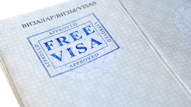 put a stamp in the passport: Free visa, approved put a stamp in the passport: Free visa, approved, close-up 4K schengen agreement stock videos & royalty-free footage