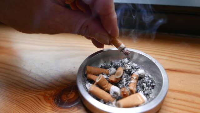 mettere una sigaretta - sigaretta video stock e b–roll