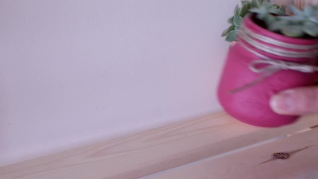 putting small colorful cactus pots on a shelf video