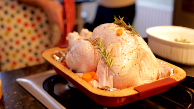 Putting The Turkey In The Oven Mature man is putting the christmas turkey in the oven. turkey stock videos & royalty-free footage