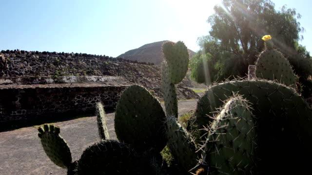 solpyramiden - pyramidform bildbanksvideor och videomaterial från bakom kulisserna