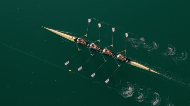 AERIAL Quad scull gliding across a lake on a sunny day Aerial shot of a team of four athletes sculling across a lake on a sunny day. Shot in Slovenia. power stock videos & royalty-free footage