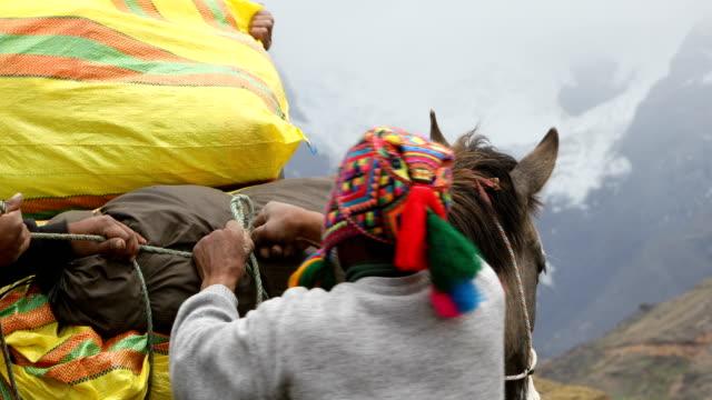 quechua-mann-laden-pferd. - peru stock-videos und b-roll-filmmaterial
