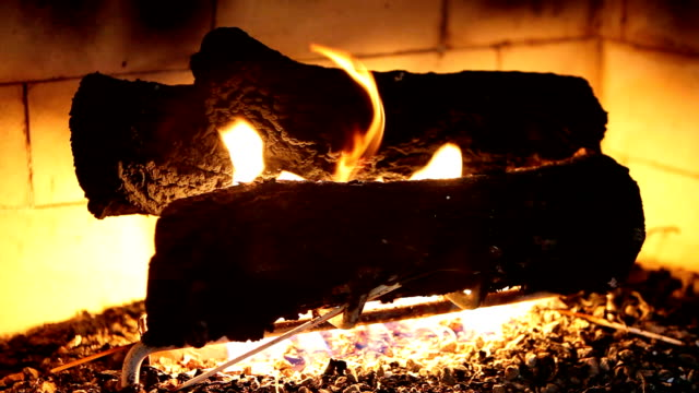 stockvideo's en b-roll-footage met hd: quiet fireplace - boomstam