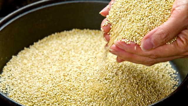 Quinoa video
