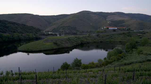 Quinta do Tedo view of shape bend river in Douro wine region at sunset, in Portugal