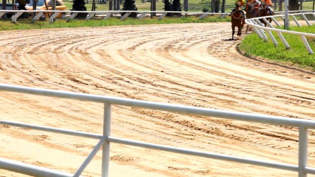 rennpferd - pferderennen stock-videos und b-roll-filmmaterial
