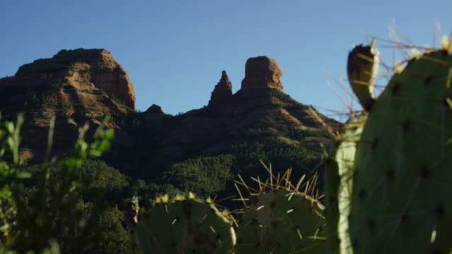 Rack Focus Shot of Mountain Rock Formations in Arizona in the Background with Cacti in the Foreground on a Sunny Day