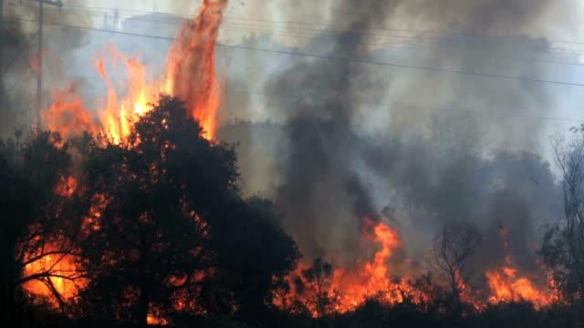 vídeos de stock e filmes b-roll de explosiva nos arbustos e árvores no fogo no sul da califórnia - califórnia
