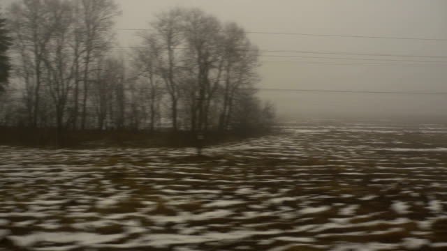 Railroad between Lithuania and Belarus. video