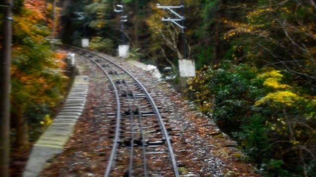 railroad in autumn video