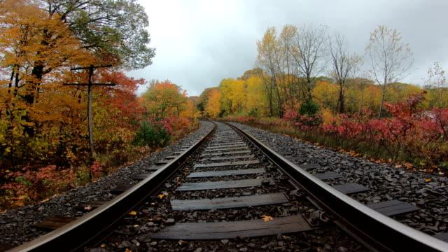 Railroad Tracks In Autumn - video
