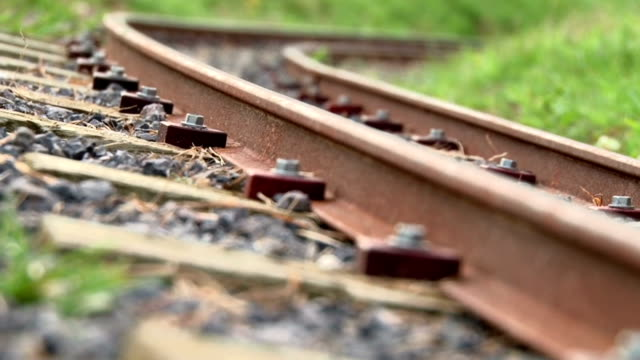 Railtrack Reveal Large-gauge model rail track in garden location revealed by rack-focus from near to far.   hound stock videos & royalty-free footage