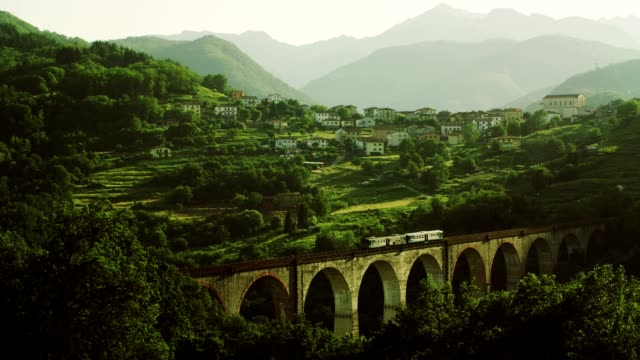 Railway Bridge with Train in Mountains video