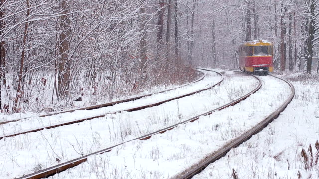 Railway in forest. video