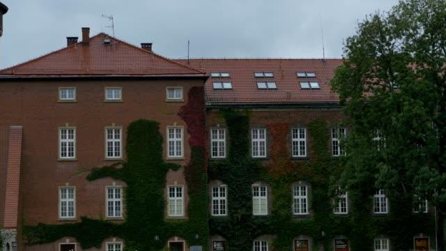 vídeos de stock e filmes b-roll de rain and strong wind on facade - ivy building