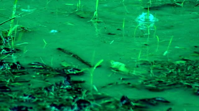 Rain Background video
