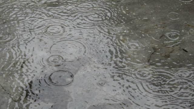 Rain drop falling on the floor during rainy season video