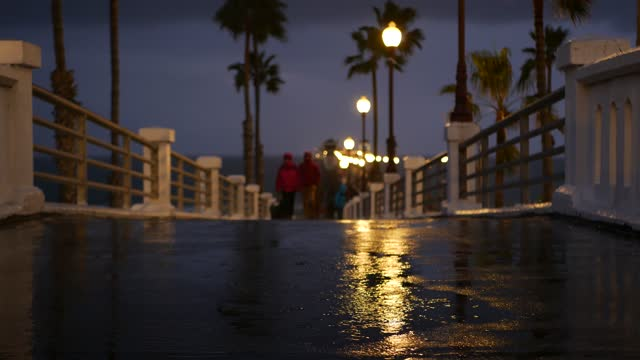 Rain drops, evening in Oceanside California USA. Pier, palms in twilight dusk. Reflection of light.