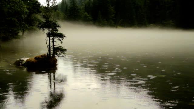 tragoss, styria, avusturya alpleri adada yalnız ağaç ile grunersee yeşil göl yüzeyine düşen yağmur damlaları - styria stok videoları ve detay görüntü çekimi