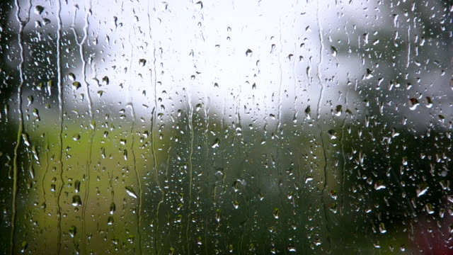 Rain drops on the window Drops of rain run down the window condensation stock videos & royalty-free footage