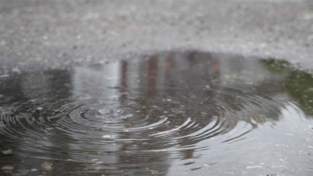 Rain drops on water surface video