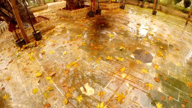 Rain Fallen Maple Leaves on Stone Tiles Park in Old City Shanlyurfa video