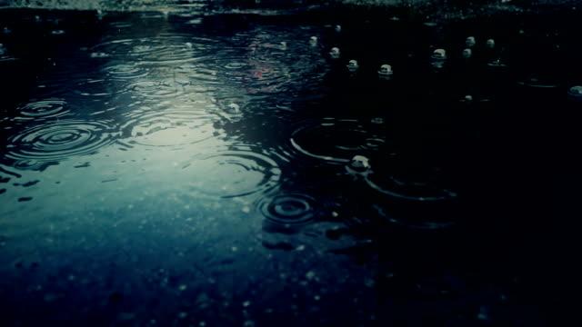 vídeos de stock e filmes b-roll de rain falling on pavement - poça