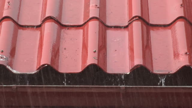 Rain Falling on Red Roofs video
