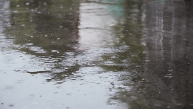 vídeos de stock e filmes b-roll de rain falling on the concrete street - poça