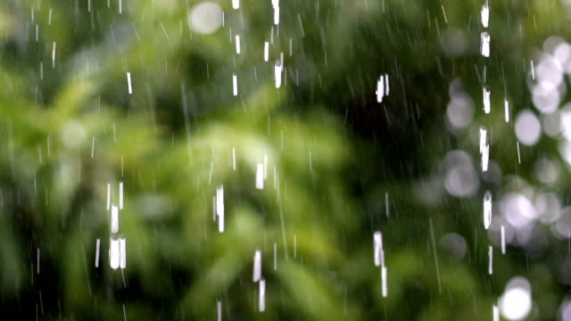 rain falling strongly with focus on a roof siding, slow motion. - monsone video stock e b–roll