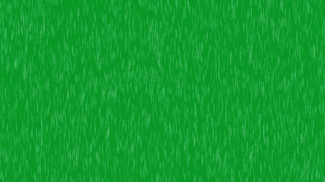 Rain falling Rain falling on the green screen rain stock videos & royalty-free footage