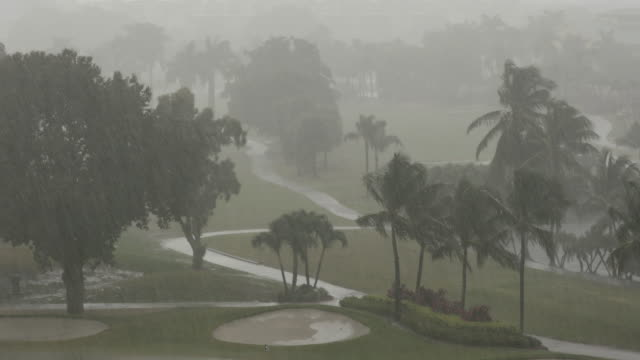 Rain falls on a golf course video