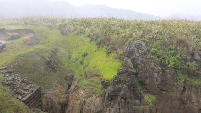 Rain from the blowhole Paparoa National Park, New Zealand oceania stock videos & royalty-free footage