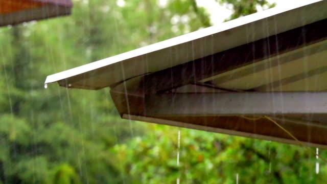 regn i taket 60fps till 30fps 4k - roof farm bildbanksvideor och videomaterial från bakom kulisserna