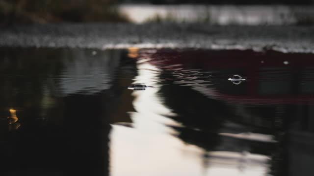 vídeos de stock e filmes b-roll de rain puddle and raindrop ripples - poça